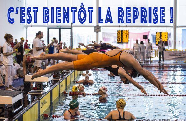 """Résultat de recherche d'images pour """"reprise natation"""""""